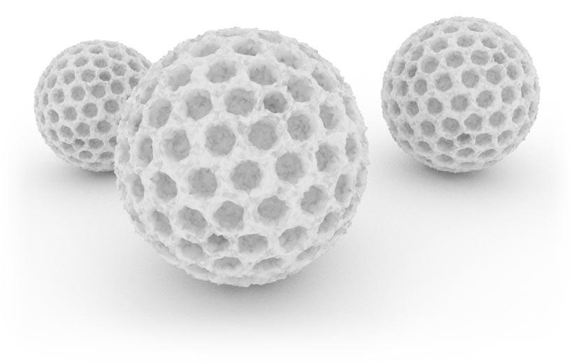 Pollen: Nahaufnahme